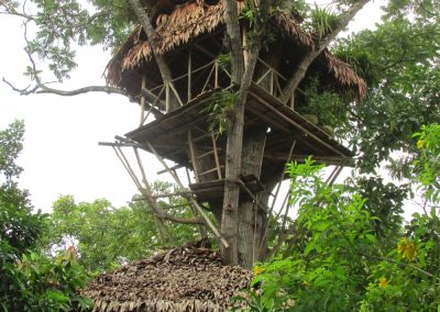 The tree house at Casa Fitzcarraldo