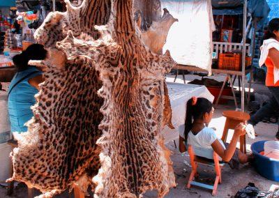 Animal pelts in Yurimaguas market