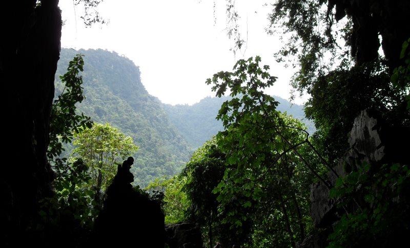 Tingo Maria National Park, Huánuco